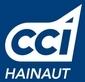 Blog d'Information Stratégique de la CCI Hainaut